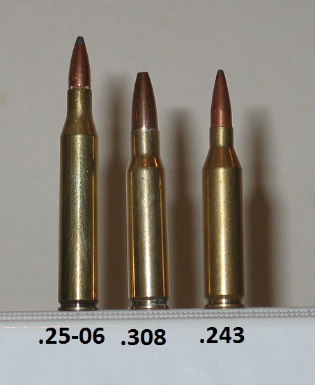 25 30 30 Helloworld: Whats Your Favorite Caliber?