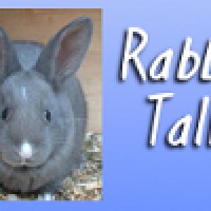 rabbittalkbloglogo2-160x100