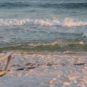 Pensacola beach for signatue.jpg