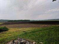 5 Field Conditions 1.jpg