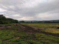 6 Field Conditions 2.jpg