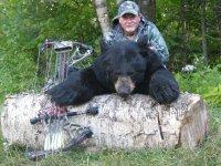 bears 2013 011.JPG