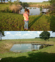 Pond Cleared-c.png