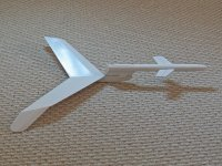 Nighthawk-1.JPG