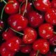 cherrybaby