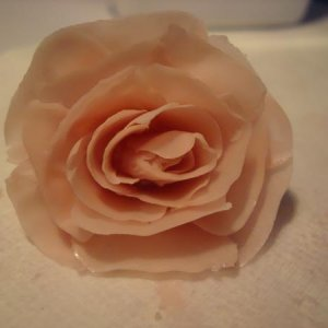 My attempt at 3D flower