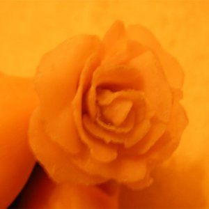 A Rose Made using L+P.  The colours are not right.  It's actually pink, not orange!