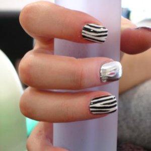 Minx zebra and silver lightening