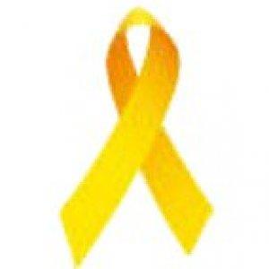 yellow ribbon  yellow ribbon for maddy