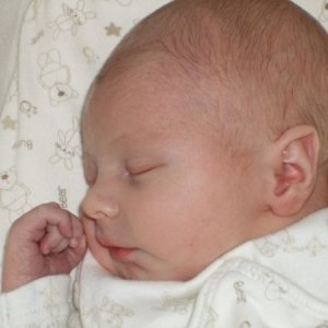 Baby Harvey  My grandson born 29th Sept