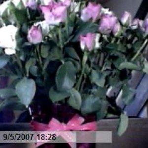 Flowers  Thanks Girls xxxxx