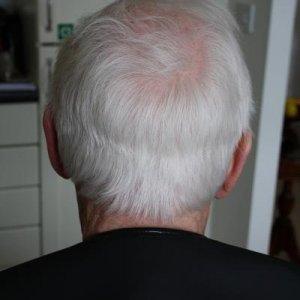 Before Scissor over comb