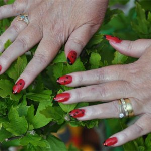 Ladybird Nails - some nail art experimentation on my mums L&P enhancements
