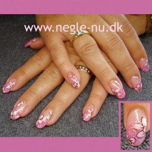 pinkwpinkflowers