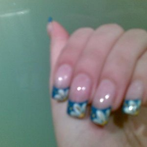 white daisy flowers with blue tip