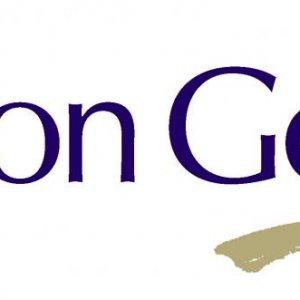 Salon Gold Logo1
