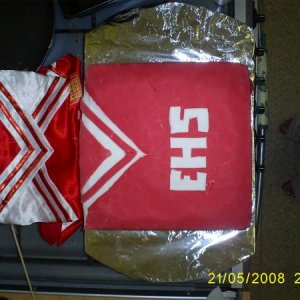 Theresa Bday cake this year she's a HSM addict