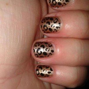 leopardn print over spiced sugar shellac