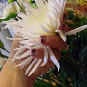 LCN permanant nail art