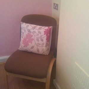 my chair from ebay £4.99 (bargin) with another cushion!