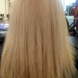 Roots And Mid Lengths