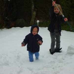 Harvey In the Snow Dec 2008