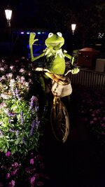 Click image for larger version.  Name:Kermit.jpg Views:55 Size:249.2 KB ID:453815