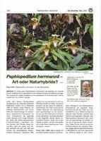 P. hermanii_article by O.Gruss.jpg