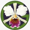 My Green Pets