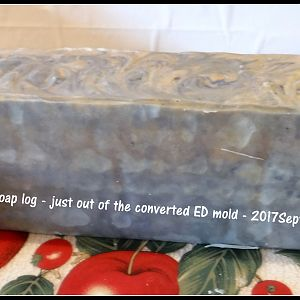 First TS soap log in converted mold