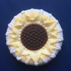Sunflower IMG_4651.jpg