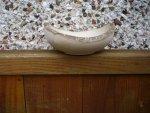Ash naturel edge bowl 007.JPG