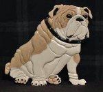 Corian British Bulldog Intarsia.jpg