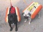 Dog hotdogs.jpg