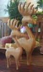 Reindeer PR.jpg