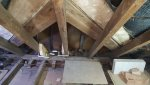 New rafters.jpeg