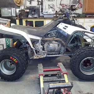 Jan 19/2012 All put back together, new banshee shock, new tires